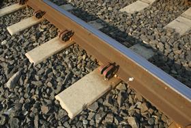 Grupo México planea ofertar unidad ferroviaria