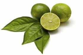 Limón de Guerrero se va a Europa