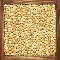 Prepare alimentos alternativos utilizando la soya