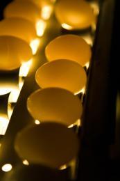 Posible práctica monopólica de huevo