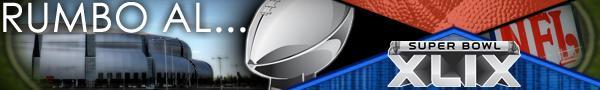 VLD ART - NFL SBXLIX