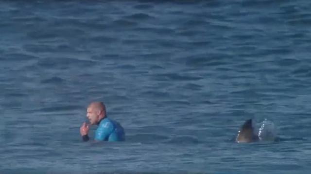 mike-fanning-ataque-tiburon.jpg