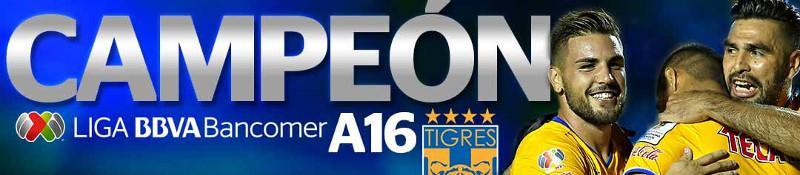 VLD Pleca - Tigres Campeon AP16
