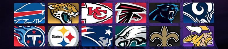 VLD Pleca - NFL Postemporada 2017