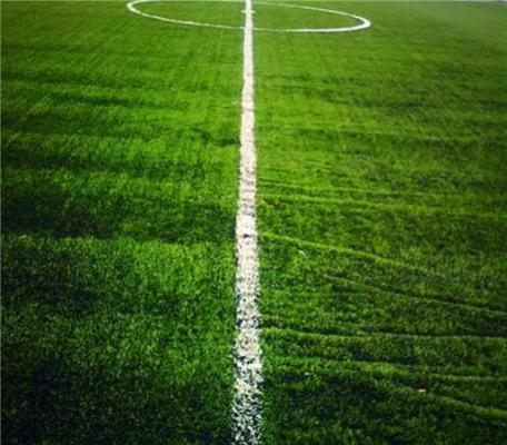 ec881048 Canchas de futbol para parques, centros deportivos e instalaciones ...